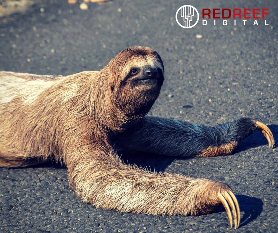 7 deadly sins - Sloth